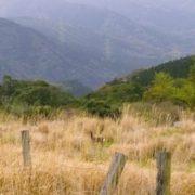 八重山高原(鹿児島)の見どころピックアップ