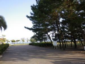 有川真由美さんサイン会inオプシア・ミスミ(2008.08)