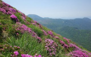 眺望とミヤマキリシマの高千穂峰登山(2017初夏)