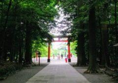 初詣にこそ行きたい鹿児島のパワースポット神社