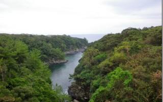駆け足の屋久島一周と、そこで見た自然。