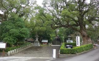 鹿児島神宮を訪れたら立ち寄りたい近隣スポット5選