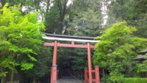 パワースポットの神社に行こう。鹿児島おすすめ神社BEST5